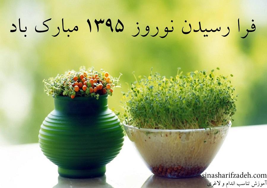 ۵ کاری که نباید در عید نوروز انجام دهید! _ مقاله و عیدی نوروز ۱۳۹۵