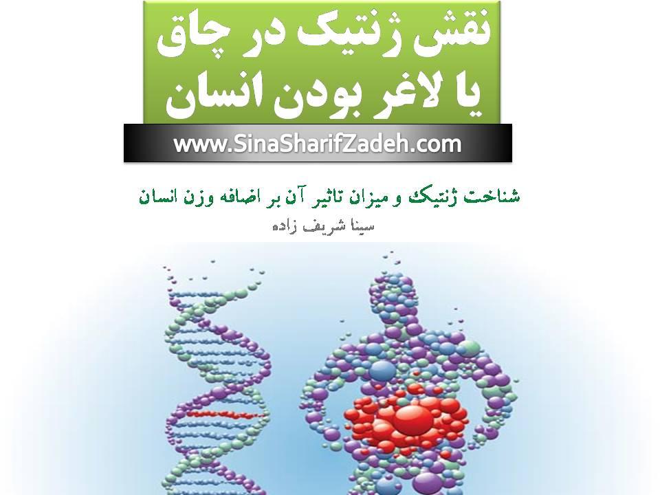 نقش ژنتیک در چاقی