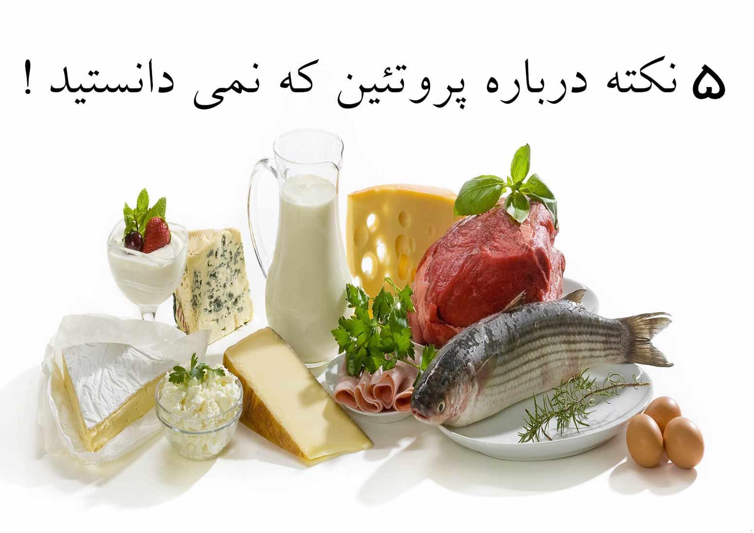 ۵ نکته درباره پروتئین که نمی دانستید !